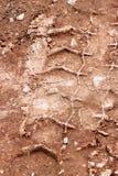拖拉机,挖掘机,汽车,在泥泞的足迹的汽车轮胎轨道 泥和轮子在路追踪在雨以后 库存照片