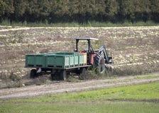 拖拉机&拖车在收获期间 库存图片