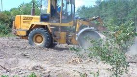 拖拉机(推土机)清除区域森林 股票录像