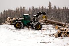 拖拉集材工云杉的结构树 免版税库存照片