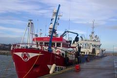 拖网渔船在一个港口停泊了在采取风雨棚的爱尔兰在一场风暴期间在爱尔兰海 免版税库存图片