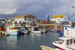 拖网渔船在小港口在Portavogie阿兹半岛村庄在唐郡,北爱尔兰 库存图片