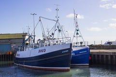 拖网渔船在小港口在Portavogie阿兹半岛村庄在唐郡,北爱尔兰 图库摄影