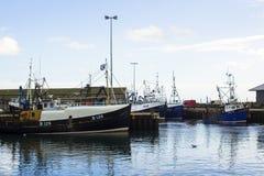 拖网渔船在小港口在Portavogie阿兹半岛村庄在唐郡,北爱尔兰 库存照片