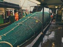 拖网用红大马哈鱼 图库摄影