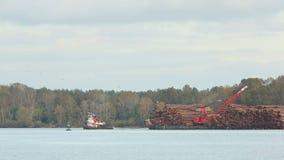 拖轮和日志驳船在弗拉塞尔河,不列颠哥伦比亚省 股票视频