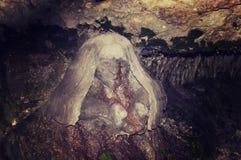 拖钓石雕塑与流动从他的眼睛的春天的 免版税库存照片