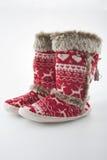 拖鞋温暖 免版税库存图片