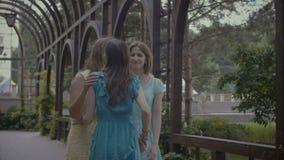 招呼两名快乐的妇女他们的朋友在公园 股票录像