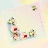 招呼在淡色的花卉卡片与抽象花 免版税图库摄影