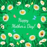 招呼看板卡的日愉快的母亲 与白色春黄菊的草在绿色 花卉自然背景 免版税库存照片