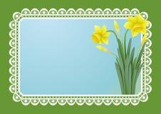 招呼看板卡的doffodils 免版税图库摄影