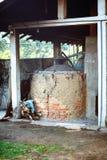 招标叶子桂香(樟脑属zeylanicum) 桂香树和灌木的工厂种植园 库存图片