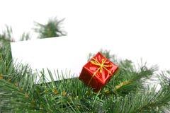 拟订圣诞树 免版税图库摄影