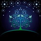 拟订结构树华伦泰 图库摄影