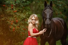 拥抱一匹黑马的红色礼服的美丽的苗条白肤金发的女孩 免版税库存照片