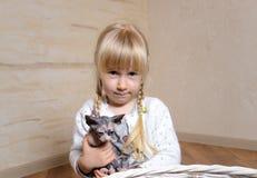 拥抱一只小sphynx小猫的逗人喜爱的小女孩 图库摄影