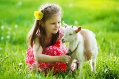 拥抱一只山羊的女孩在绿草的庭院里 库存图片