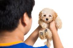 拥抱一只逗人喜爱的长卷毛狗小狗的少年 库存照片