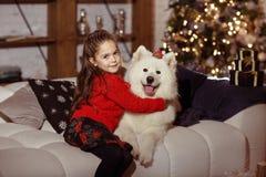 拥抱一条大白色狗的一件红色毛线衣的美丽的愉快的女孩  库存照片