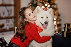 拥抱一条大白色狗的一件红色毛线衣的美丽的愉快的女孩  免版税库存照片