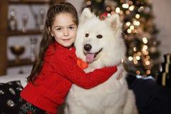 拥抱一条大白色狗的一件红色毛线衣的美丽的愉快的女孩  免版税库存图片