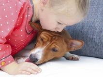 拥抱一条红色basenji狗的小白肤金发的卷曲女孩 免版税库存图片