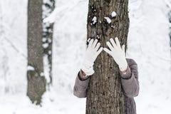 拥抱一棵树的妇女在冬天森林里 爱恋的本质 免版税库存图片