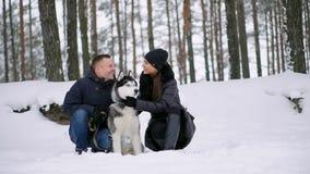 拥抱与他们的阿拉斯加的爱斯基摩狗狗的逗人喜爱的愉快的夫妇家庭画象舔人的面孔 滑稽小狗佩带 股票录像