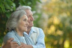 拥抱前辈的夫妇 免版税库存图片
