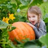 拥抱南瓜的逗人喜爱的小女孩 免版税库存图片