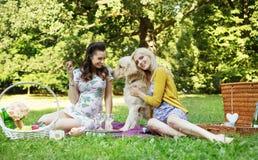 拥抱友好的狗的女朋友的画象 免版税库存照片