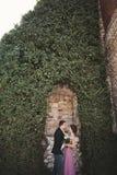 拥抱和亲吻在背景华美的植物的豪华婚礼夫妇,在古老城堡附近陷下 图库摄影