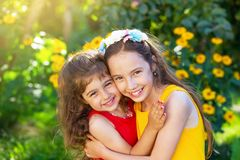 拥抱和微笑在晴朗的国家的两个逗人喜爱的小女孩 免版税库存图片