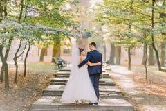 拥抱和走在晴朗的公园的后面观点的时髦的新婚佳偶 库存图片