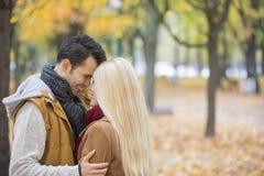 拥抱在公园的爱恋的夫妇 库存照片