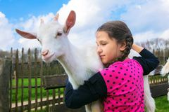 拥抱在农场的小女孩一只孩子山羊 库存照片