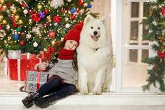 拥抱在圣诞节stree的美丽的小女孩一条大白色狗 免版税图库摄影