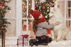 拥抱在圣诞节stree的美丽的小女孩一条大白色狗 免版税库存照片