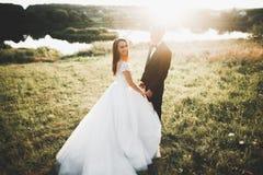 拥抱在日落的公园的新婚佳偶美好的浪漫婚礼夫妇  图库摄影