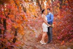 拥抱在秋天公园的微笑的夫妇 愉快的新娘和新郎在森林里,户外 库存图片