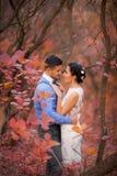 拥抱在秋天公园的浪漫夫妇 愉快的新娘和新郎在森林里,户外 免版税库存图片