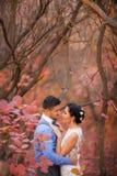 拥抱在秋天公园的浪漫夫妇 愉快的新娘和新郎在森林里,户外 免版税图库摄影
