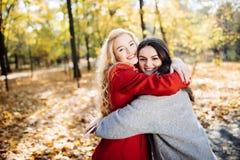 拥抱她的最好的朋友的女孩在秋天公园 免版税图库摄影