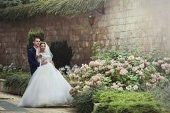 拥抱新娘从后面的英俊的新郎在有老的一个庭院里 免版税图库摄影