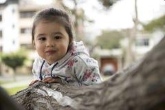 拥抱树的小女孩,查寻 免版税图库摄影
