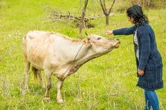 拥抱母牛的妇女 免版税库存图片