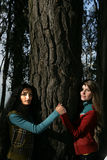拥抱结构树二妇女 免版税库存图片