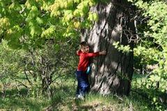 拥抱结构树年轻人的男孩 库存图片