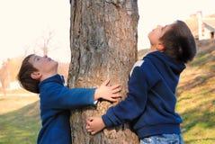 拥抱结构树的男孩 库存照片